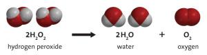 hydrogen_peroxide_decomposition